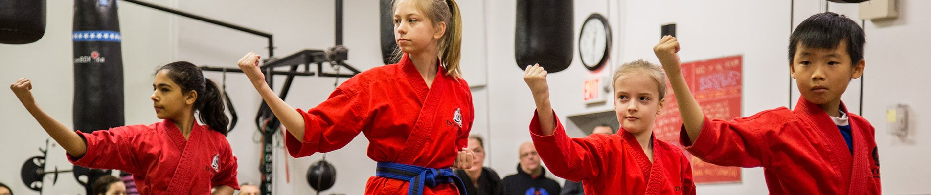 Douvris Martial Arts - Karate, Kickboxing, Fitness, Personal